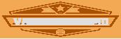 Vaughan Limo Logo